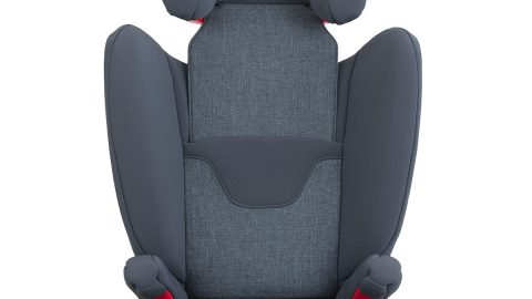 AACE Booster Seat