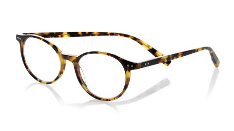 Case Closed Plaid Acetate Reading Glasses
