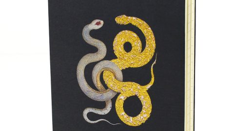 Snake Journal