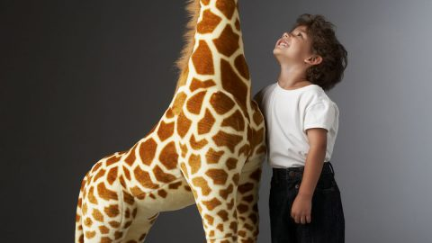 Tall Giraffe Plush