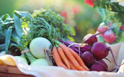 Thrive Market Coupons To Eat Better And Save Money