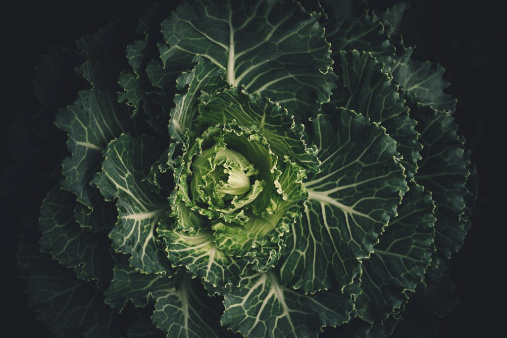 Kale-Organic-Vegetables-And- Fruits