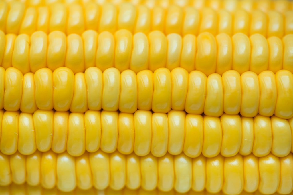 Corn- On-The-Cob