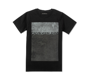 Calvin Klein Big Boys Graphic-Print Cotton T-Shirt