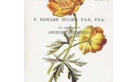 Familiar Garden Flowers: Globe Flower: Decorative Notebook+journal (8.5 X 11)